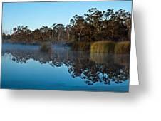 Lenthalls Dam 14 Greeting Card by David Barringhaus