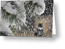 Leo In The Snow Storm Greeting Card