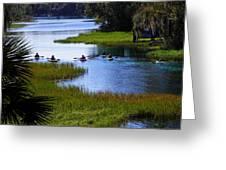 Let's Kayak Greeting Card