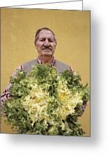 Lettuce Harvest Greeting Card