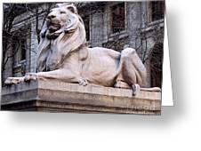 Library Lion-new York City Greeting Card