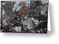 Lichen Abstract II Greeting Card