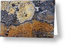 Lichen Pattern Series - 19 Greeting Card