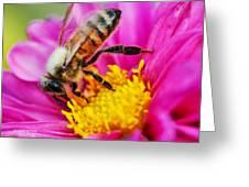Life Is Full Of Beauty Greeting Card by Sarai Rachel