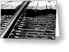 Life On The Line Greeting Card