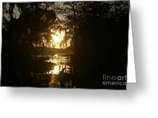 Light In Gold Greeting Card