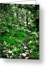 Lighted Path Greeting Card