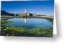 Lighthouse And Tide Pool Greeting Card