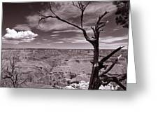 Lightning Striking Tree Of The Grand Canyon Greeting Card