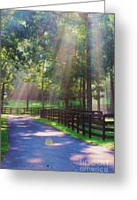 Lightray Farm Greeting Card