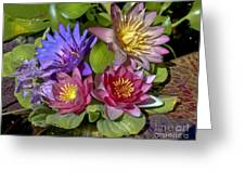 Lilies No. 11 Greeting Card by Anne Klar