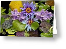 Lilies No. 12 Greeting Card