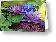 Lilies No. 27 Greeting Card by Anne Klar