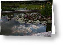 Lillies And Clouds Greeting Card