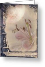 Lily In The Moonlight Greeting Card