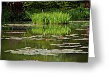 Lily Pads At Giverney Greeting Card