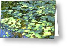 Lilypads Greeting Card