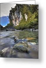 Limestone Cliffs And Fox River, Paparoa Greeting Card