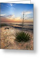 Linger By The Sea Greeting Card