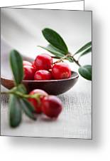 Lingonberries Greeting Card