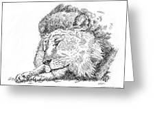 Lion-art-black-white Greeting Card
