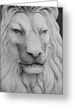 Lion In Stone Greeting Card