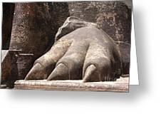 Lion's Paw Sigiriya Greeting Card