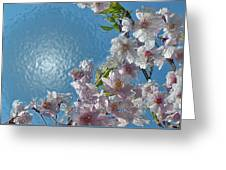 Liquid Cherry Greeting Card by Jen White