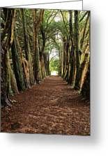 Lismore, County Waterford, Ireland Greeting Card