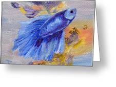 Little Blue Betta Fish Greeting Card
