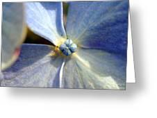 Little Blue Flower Greeting Card