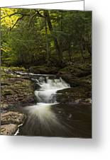 Little Carp River Falls 3 Greeting Card