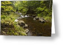 Little Carp River Falls 5 Greeting Card