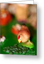 Little Chicken Greeting Card