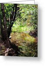 Little Creek Greeting Card