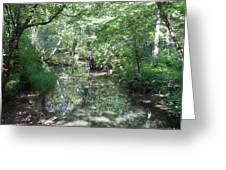 Little Creek Reflections Greeting Card