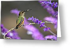 Little Extra Pollen 2 Greeting Card