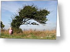 Little Girl And Wind-blown Tree Greeting Card