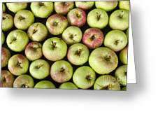 Little Green Apples Greeting Card