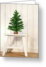 Little Green Fir Tree Greeting Card