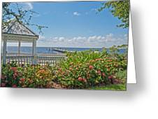 Little Harbor Tampa Bay Greeting Card