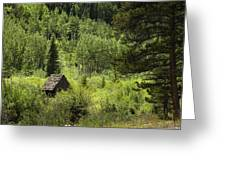 Little House - Vail Greeting Card
