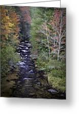 Little River - North Carolina Autumn Scene Greeting Card