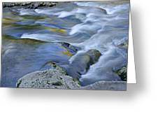 Little River Great Smoky Mountains Greeting Card