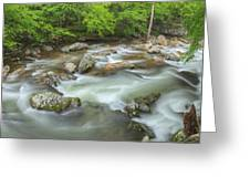 Little River Rapids Greeting Card by Dean Pennala