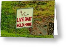 Live Bait Sign Greeting Card