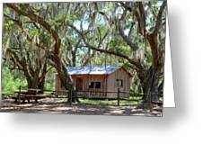 Live Oak Cabin Greeting Card by Bob Jackson