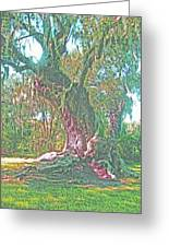 Live Oak On The Teche Greeting Card