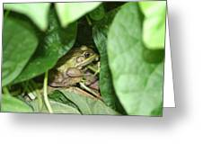Lives With The Green Beans Greeting Card