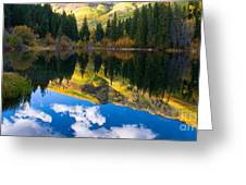 Lizard Lake Reflections Greeting Card